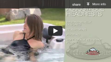 Arctic Spas Adjustable Headrests